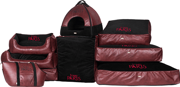 Cazo Paris - set