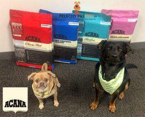 Krmivo pre psa - Acana
